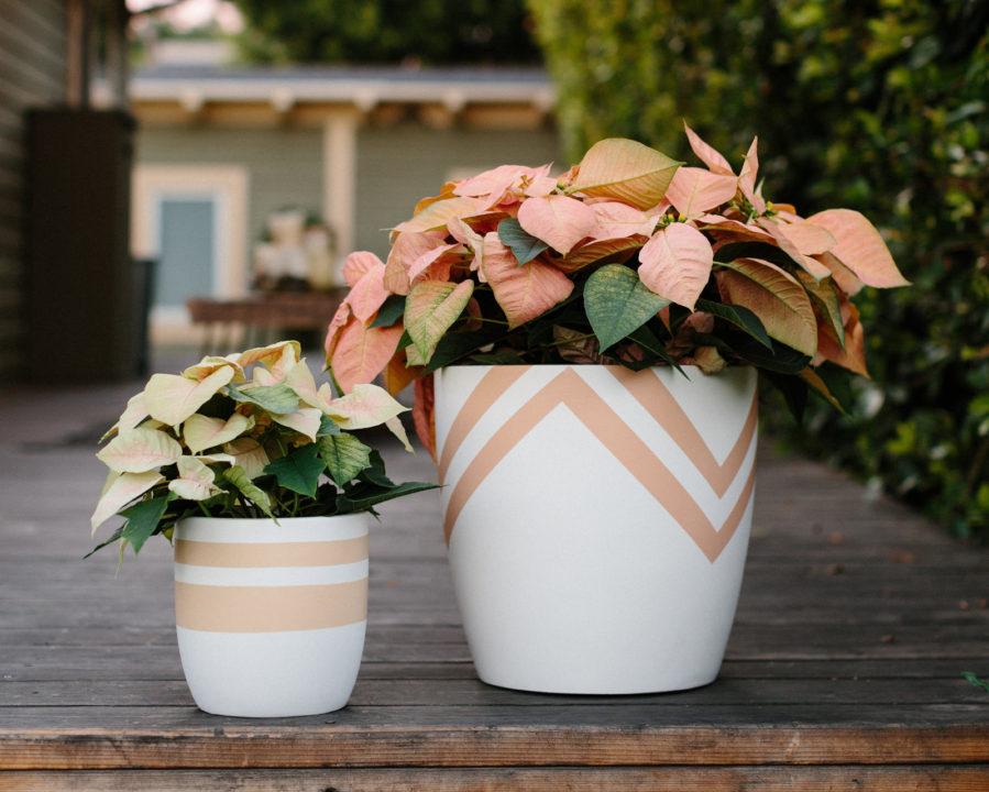 pop-up-greens-planters