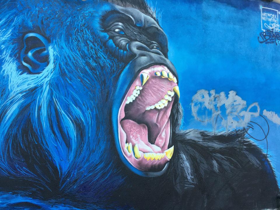 Lincoln Park Gorilla
