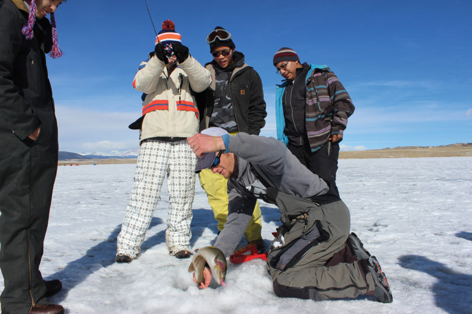 Ice-Fish-Colorado