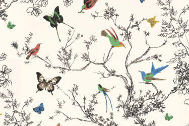 Butterfly-Print-Cropped