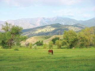 Lone-Hawk-Farm