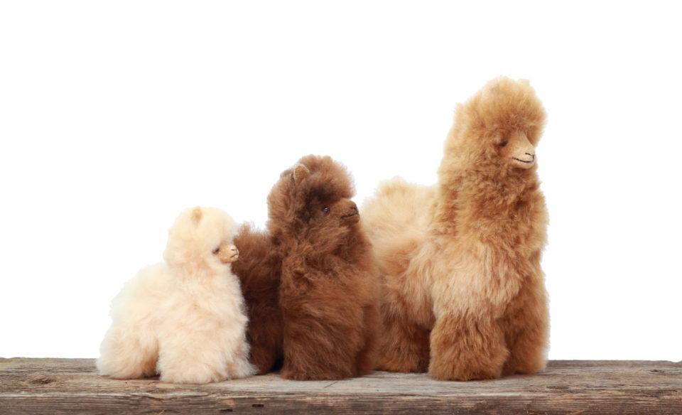 Stuffed alpaca animals Photo courtesy of Shabby Alpaca.