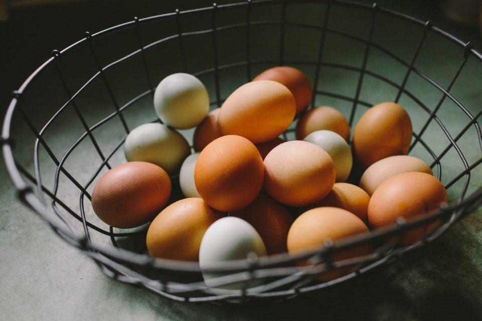 eggs Natalie Rhea Riggs