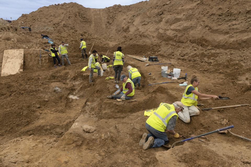 dinosaur fossils found in Highlands Ranch
