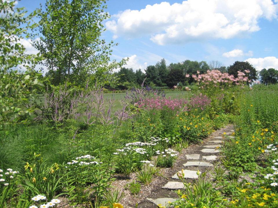 tilly natural garden