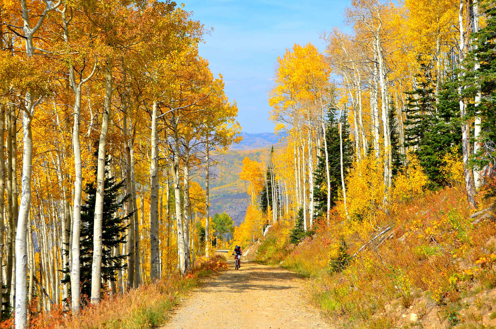 Colorado Fall Colors 2020 When Where To See The Leaves Change