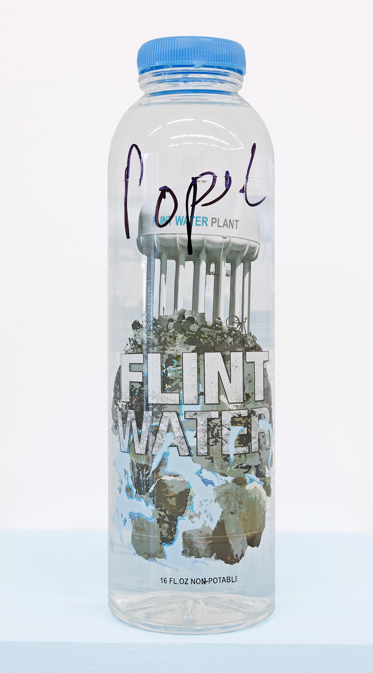 Flint Water Bottle