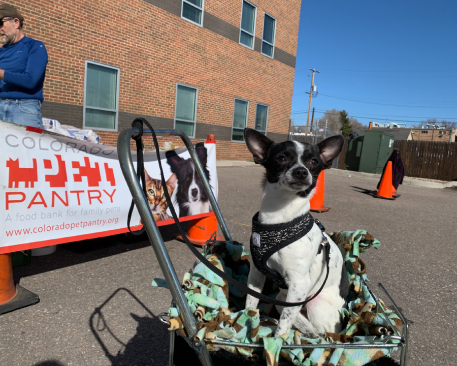 Colorado Pet Pantry, Colorado Gives Day